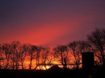 Sunrise, January 21