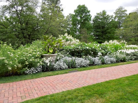 White flowers along a walkway at Longwood Gardens, Kennett Square, PA (8-3-14)