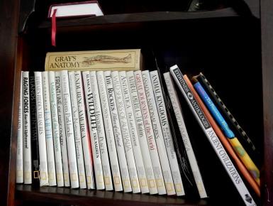 The Author Chronicles - Top Picks Thursday - books - bookshelf