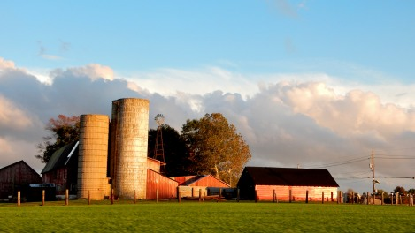 The Author Chronicles, J. Thomas Ross, farm in October