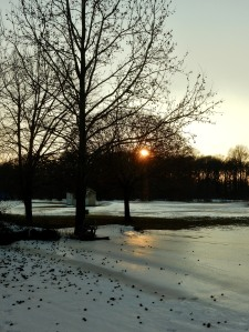 The Author Chronicles, J. Thomas Ross, sunset over the snow, sweet gum tree in winter snow at sunset