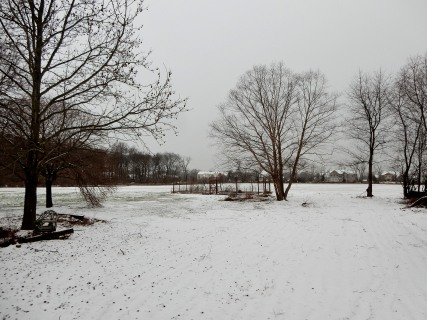 The Author Chronicles, J. Thomas Ross, snow on the first day of spring