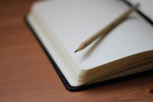 The Author Chronicles, J. Thomas Ross, pencil on journal, Jan Kahánek