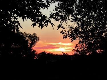 J. Thomas Ross, The Author Chronicles, sunset
