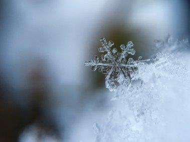 The Author Chronicles, J. Thomas Ross, snowflake
