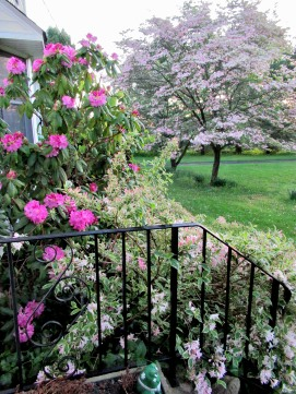 The Author Chronicles, J. Thomas, spring flowers, flowering bushes and dogwood