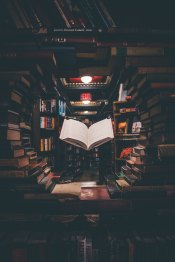 The Author Chronicles, J. Thomas, book and book shelves