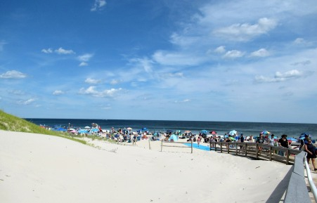 The Author Chronicles, J. Thomas Ross, Top Picks Thursday, Island Beach State Park, view of the crowded beach
