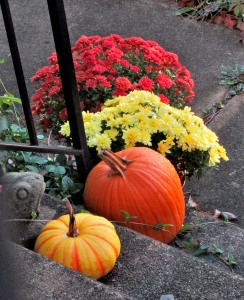 The Author Chronicles, J. Thomas Ross, fall, pumpkins and mums
