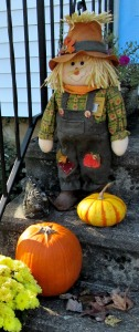 The Author Chronicles, J. Thomas Ross, Top Picks Thursday, November, scarecrow with pumpkins