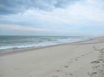 The Author Chronicles, Top Picks Thursday, J. Thomas Ross, Island Beach State Park, empty beach looking south toward Barnegat Light