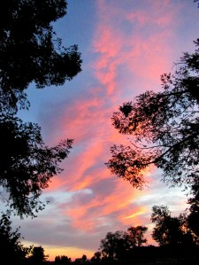 The Author Chronicles, Top Picks Thursday, J. Thomas Ross, August, clouds at dawn