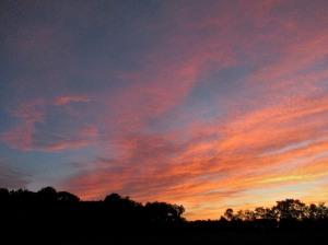 The Author Chronicles, Top Picks Thursday, J. Thomas Ross, September sunset