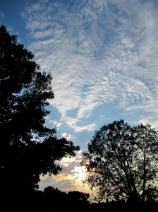 The Author Chronicles, Top Picks Thursday, J. Thomas Ross, evening clouds