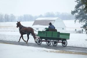 The Author Chronicles, Top Picks Thursday, J. Thomas Ross, horse-drawn wagon in snow