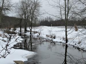 The Author Chronicles, Top Picks Thursday, J. Thomas Ross, snow-edged stream by the horse farm on Oxmead Road