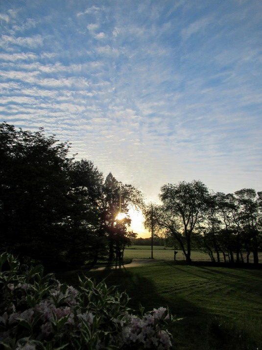 05-27 - blog - sunrise